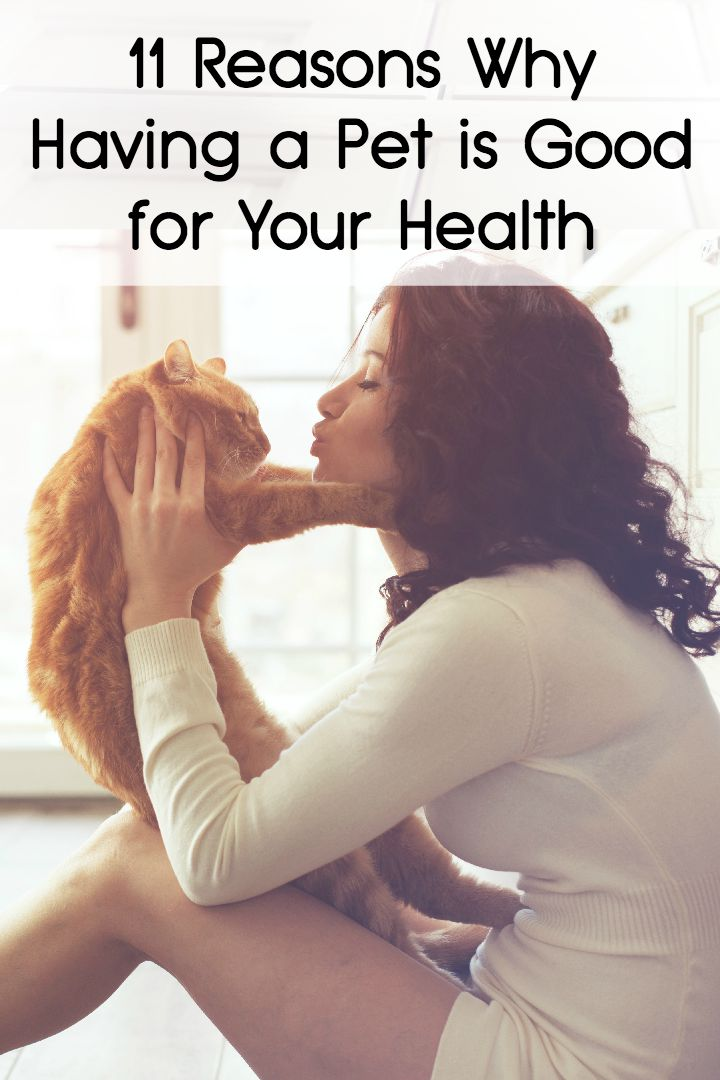11 Reasons Why Having a Pet is Good for Your Health ~