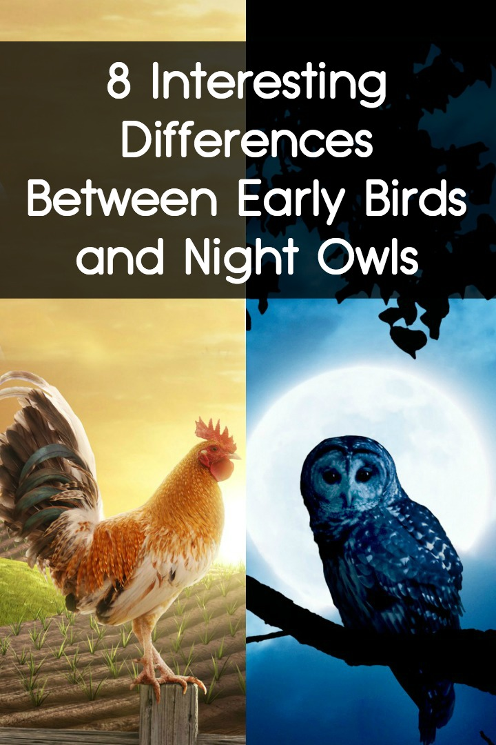 8 Interesting Differences Between Early Birds and Night Owls ~ https://facthacker.com/early-birds-and-night-owls/